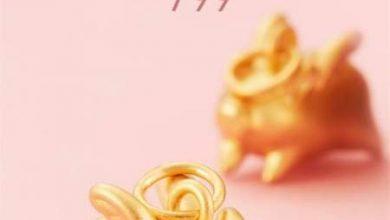 Photo of Episodio 28 – Xiaomi presenta su cerdo de oro y se avecinan nuevos móviles
