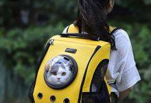 Photo of Xiaomi ahora vende mochilas para gatos y te acercamos las que más se venden en China