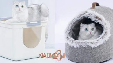 Photo of Xiaomi pone a la venta una casita y un arenero para gatos