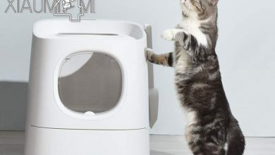 Photo of Xiaomi lanza su primer arenero para gatos inteligente con soporte Mi Home