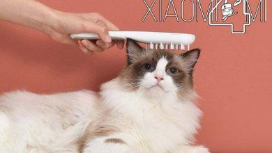Photo of Lo último de Xiaomi en Youpin es un peine para esterilizar el pelo de los perros y los gatos