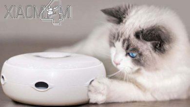 Photo of Xiaomi pone a la venta un nuevo juguete para entretener a nuestro gato