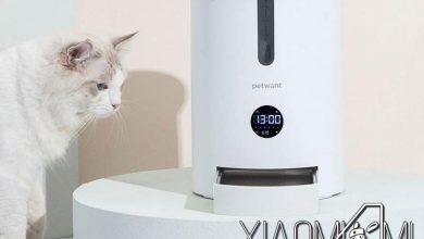 Photo of Xiaomi lanza al mercado un nuevo comedero inteligente para gatos