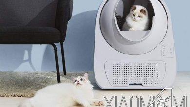 Photo of Xiaomi pone a la venta una caja de arena para gatos automática