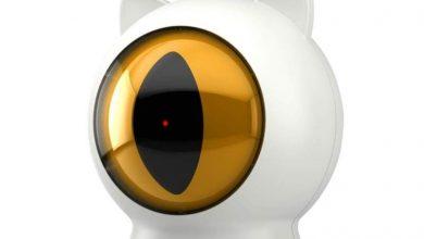 Photo of Este enorme ojo es el nuevo juguete para gatos que vende Xiaomi en Youpin