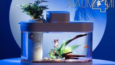 Photo of Xiaomi pone a la venta una pecera con luces y control remoto desde la aplicación Mi Home de Xiaomi