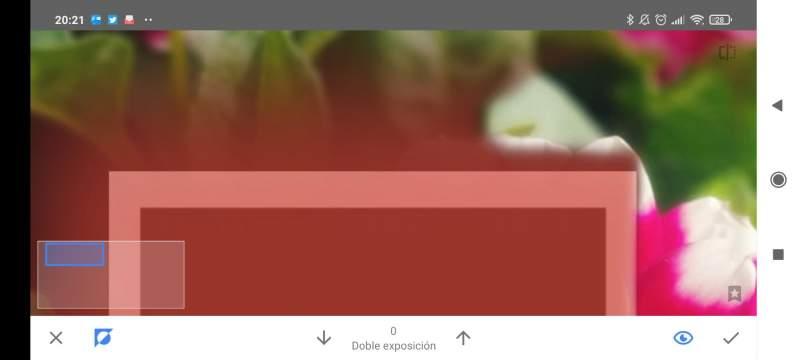 Snapseed. ¿Qué puedes hacer con esta aplicación de edición de fotografía?