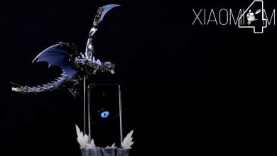 Xiaomi Mi 11 dragón